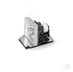 Beeldscherm Acer Acer MC.JF411.002 projectielamp